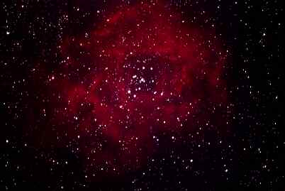 Rosette Nebula by Mike Leitch